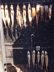 Die geräucherten Fische gingen schneller über die Theke als geräuchert werden konnte